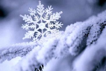 Снежни имена черпят за имен ден днес