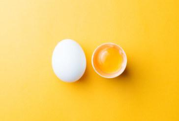 Яйцата! Как да ги приготвяме и колко точно полезни са те
