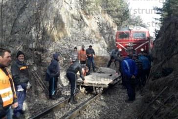 Изтеглиха дерайлиралия край Якоруда влак