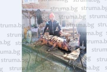 """ШЕГА ИЛИ ПРОВОКАЦИЯ! Популярният неврокопчанин Андон Балтаджиев пред 50 гости на """"свинска сватба"""" изписа името Бойко на закланото прасе"""