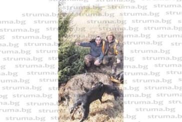 Хаджидимовският Гонзо сложи край на ловната суша на дружинката с отстрел на 160-кг глиган