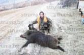 С 3 прасета за 18 г., всичките гътнати на 8 декември, грамажданинът Иван Евтимов отчете своеобразен рекорд