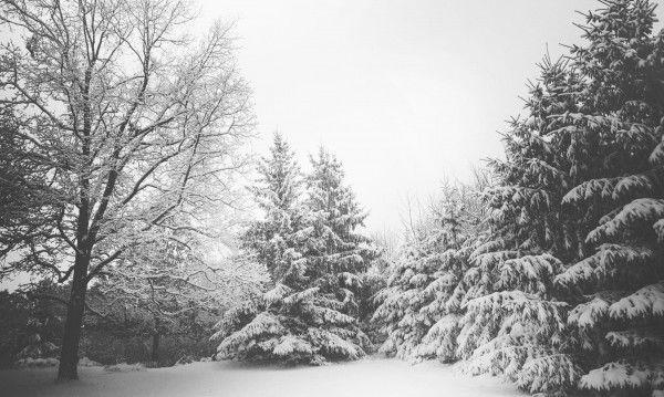 Февруари ще е топъл, март – непредвидим! Какво време ни очаква?