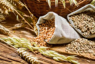 Фибрите пазят от болести на сърцето и диабет