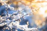 Времето днес: Топло за сезона, предимно слънчево