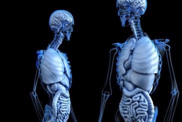 Необяснимите случаи в медицината