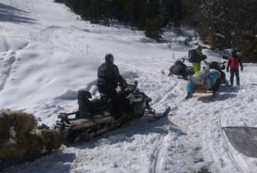 Обилен снеговалеж откъсна от света села в Кюстендилско