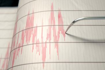 Силни земетресения разтърсиха земята