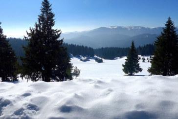 Министерството на туризма: Няма бедстващи туристи в зимните курорти