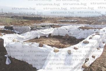 С 2.5 месеца закъснение покриха ценните находки край с. Покровник, разпадат се от влагата и снеговете, още се чака пренасяне на 2/3 от тях