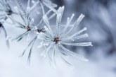 Опасно време:  Голям студ и жълт код за силен вятър в цялата страна за днес