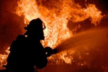 Огнеборци гасиха 21 пожара за ден в Кюстендилско