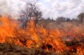Собственик на овощна градина предизвика пожар, 3 дка овошки унищожени