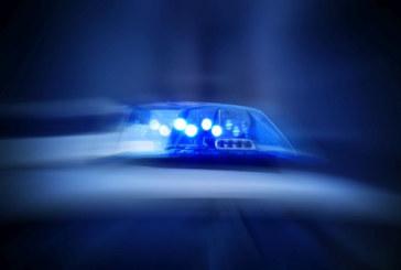 Криминалисти тарашиха автосервиза на Л. Емилов-Фаера в Големо село за части от крадени коли