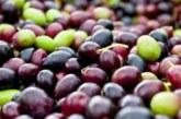 Включете маслини в менюто си