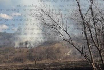 Огнен ад! Голям пожар лумна край Елешница