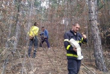 Пожарът край Дупница е напълно потушен