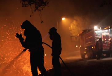 8 пожара потушиха за ден огнеборците в Кюстендилско