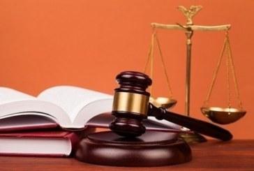 Прокуратурата нищи инцидент с жестоко отношение към животно в Радомир