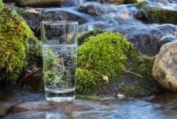 Какви са ползите за здравето от изворната вода