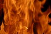 Пожар изпепели цех за обработка на пилета