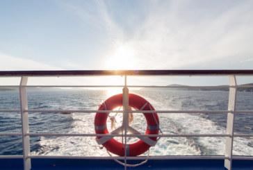Страшен сблъсък между ферибот и кит в Япония, има много ранени