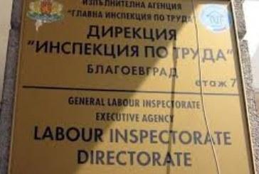 Безработни се страхуват да подписват еднодневни договори в земеделието, за да не изгубят помощите си