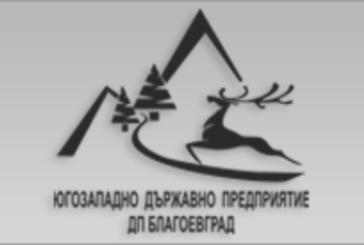 ЮЗДП е домакин на национално откриване на седмица на гората 2019 г