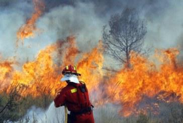 10 пожара регистрирани на територията на ЮЗДП само за ден