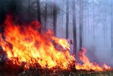 Огнен ад в Радомирско! Загина 82-г мъж