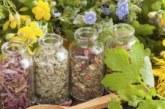 Народни лекове срещу всякакви болежки, или бабини деветини