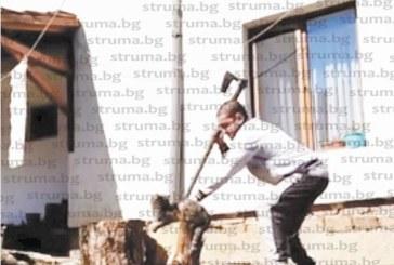 Садизмът на 22-г. П. Гешев,отсякъл със секира лапата на котка, разбуни духовете, граждани искат затвор