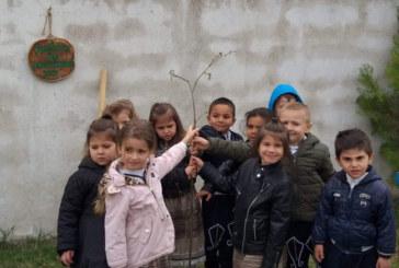 """Деца засадиха Дърво на поколенията по случай 50 г. от обявяването на Симитли за град и 60 г. ДГ """"Радост"""""""