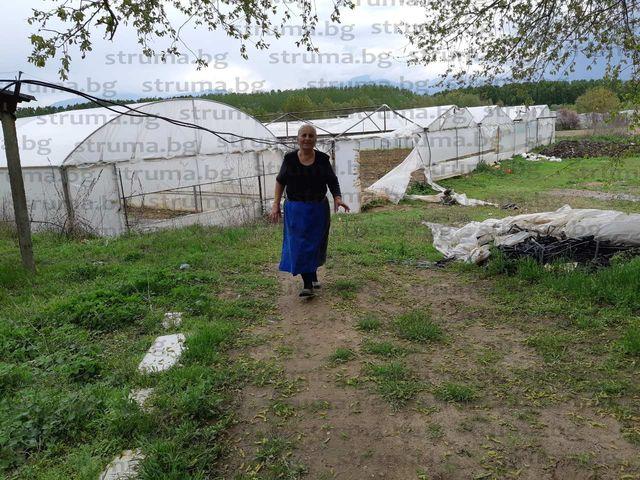 Буря връхлетя санданско село! Вихрушка отнесе десетки оранжерии за минути, част от реколтата унищожена