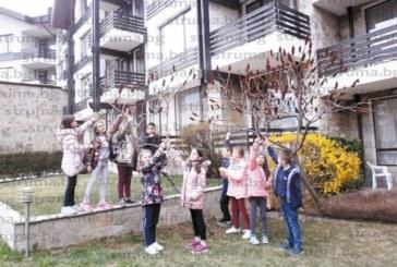 Благоевградски ученици релаксираха с модно ревю и дискотека на зелено училище