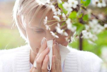 Храните, които успокояват пролетните алергии