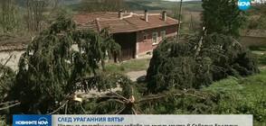 Щети за десетки хиляди левове след ураганния вятър в Северна България