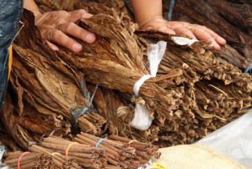Задържаха около 20 тона български контрабанден тютюн в Хонконг