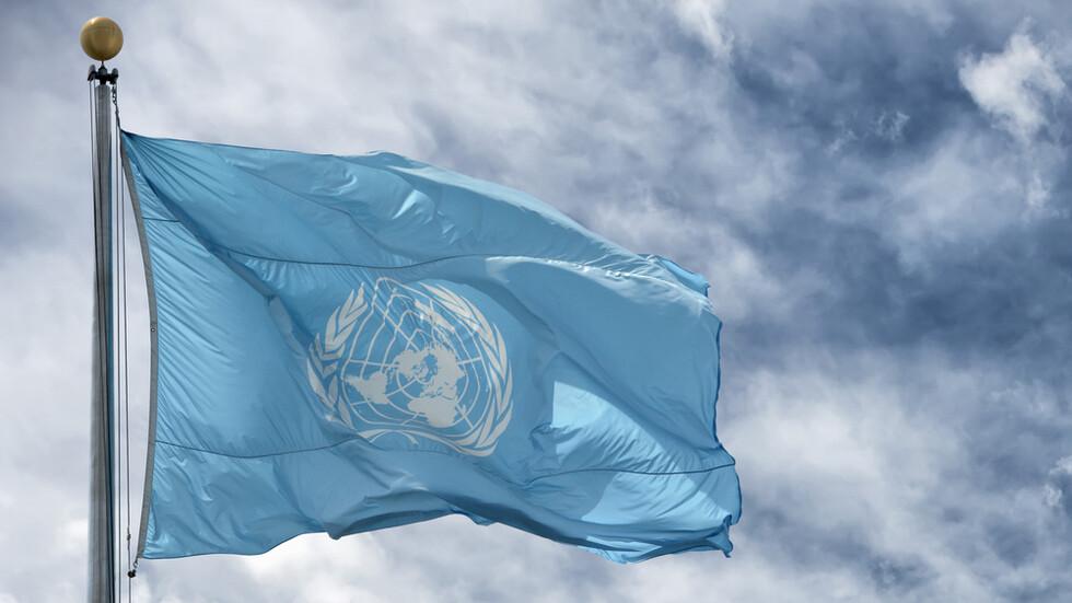 ООН: Присъдата на Асандж е непропорционална на престъплението му