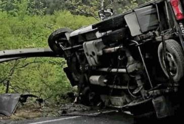 Камион катастрофира на Е-79, има разлив на гориво