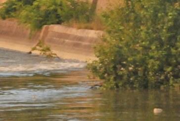 15-годишно момче се удави в Огоста