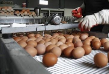 Храната в Румъния и Полша по-евтина от тази в България