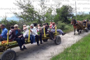 Пенсионерите от Баня впрегнаха единственото магаре в селото, за да посрещнат гости от Велинград