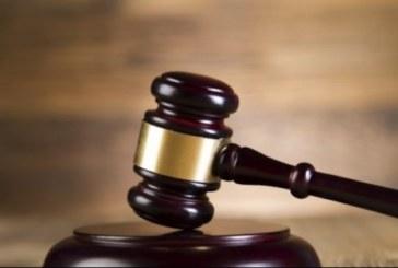 Жител на Микрево се изправя пред съда за незаконно държане на костенурки от защитен вид