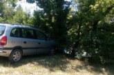 Инцидент на Задушница в Благоевград