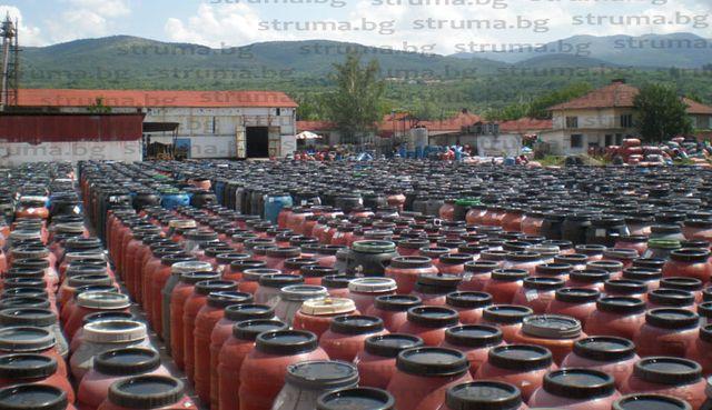 Стартира черешовата кампания в Кюстендилско, изкупните цени от 60 ст. до 80 ст. за килограм