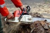 ЛЮБОПИТНА ПОРЪЧКА! Братя-дървосекачи от Банско вземат 168 000 лв. да изскубят ръчно водораслите от 16 езера в Пирин