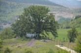 Изберете къде да отидете! 7 населени места в Симитлийско празнуват Илинден