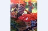 Болест по доматите вдигна цената им на пазара, най-евтините –  2,50 лв. за килограм