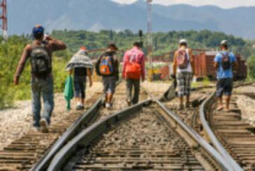 САЩ с операция срещу нелегалните имигранти